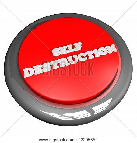 Self Destruction Button