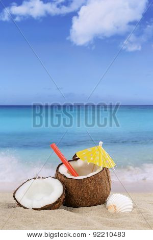 Coconut Fruit In Summer On The Beach And Sea
