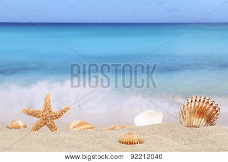 Beach Background Scene In Summer On Vacation With Sea And Copyspace