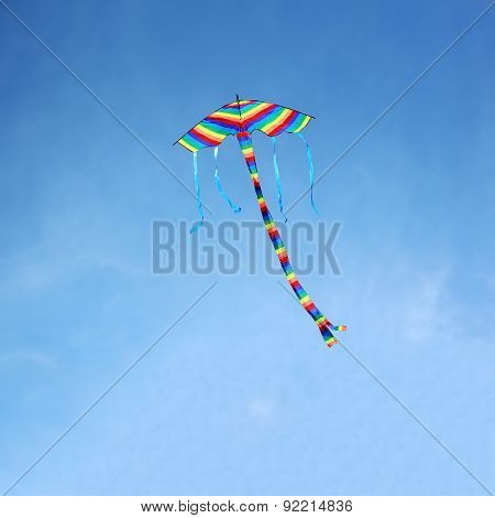 Flying colorful kite.