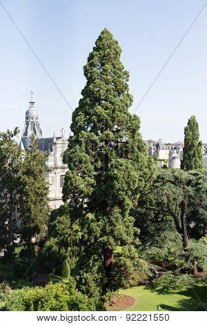 Park in Blois