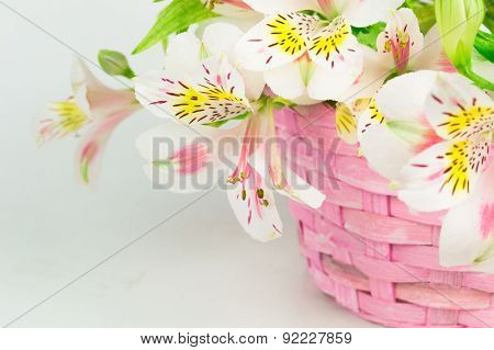 Bouquet of alstroemeria  in wicker basket