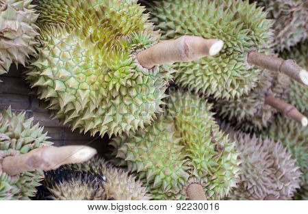 Thai Durian, the king of fruit in south-east Asia