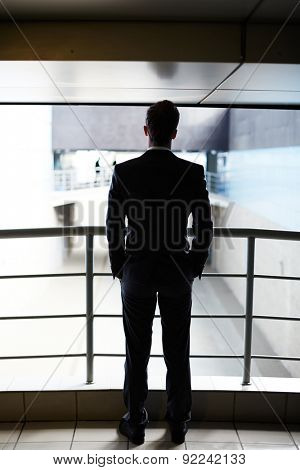 Rear view of businessman standing by railings