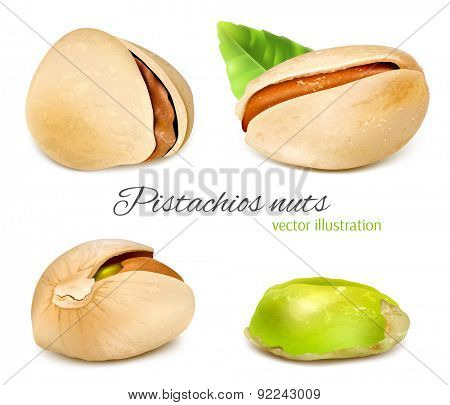 Pistachio nuts and pistachio kernel. Vector illustration.