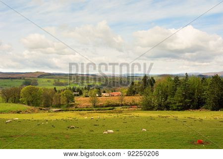 Farmland With Farm Buildings, Grazing Field And Sheep In Scottish Highland