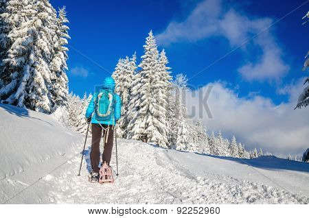 Woman in blue jacket and sticks walking, winter