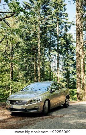Hybrid Volvo S60 Executive Car Parked In The Middle Of Green Forest