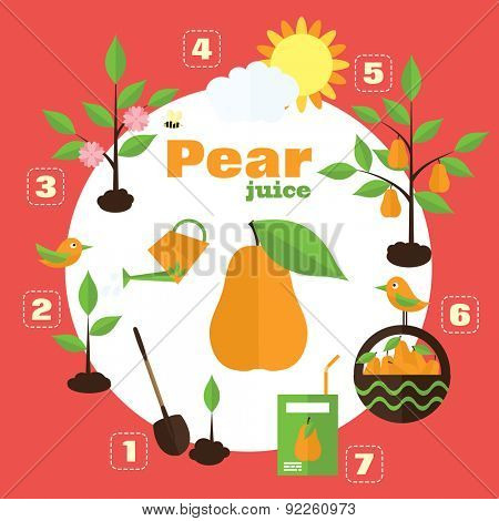 Vector garden illustration in flat style. Planting pear trees, harvesting, processing pears into juice.