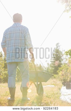 Rear view of man pushing wheelbarrow at garden