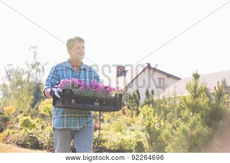Gardener walking while carrying crate of flower pots in garden