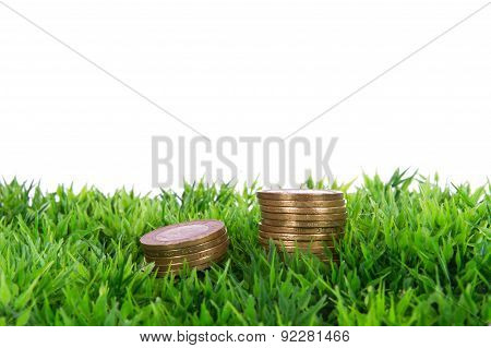 Coins On Grass