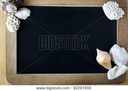Blank Board With Sea Shell