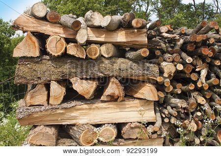 chopped firewood for the winter, the wood of the plum tree