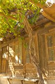 foto of unnatural  - Stylish old house closeup with vine closeup - JPG