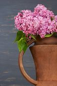 foto of pitcher  - Fresh lilac flowers in the brown ceramic pitcher against blue background - JPG