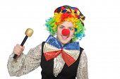 stock photo of maracas  - Female clown with maracas isolated on white - JPG