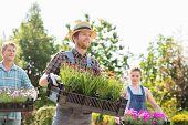 image of flower pots  - Gardeners carrying flower pots in crates at garden - JPG