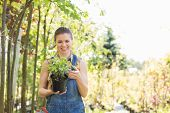 stock photo of plant pot  - Happy woman looking at potted plant in garden - JPG