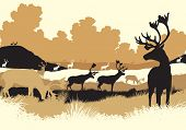 pic of caribou  - Illustration of reindeer or caribou moving across a tundra landscape - JPG