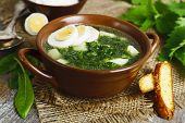 picture of sorrel  - Soup of sorrel and nettles on the table - JPG