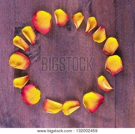A photo of vibrant yellow and red rose petals forming a circle on a dark wooden board with copyspace shot from above