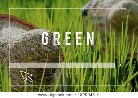 Explore Life Earth Green Environment Concept
