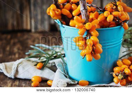 Ripe sea buckthorn in blue metal bucket on wooden background. Bio healthy berries. Selective focus