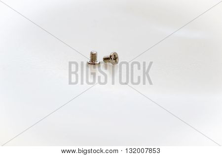 Pair of small screws / A pair of small screws on white background