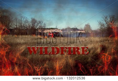 firemen extinguish wildfire. flames close-up. billboard. inscription wildfire.