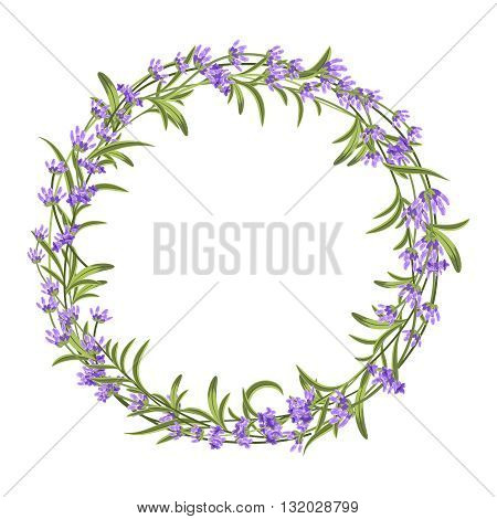 Lavender wreath. Vector illustration for decorations. Frame floral lavender, lavender frame invitation, nature flower lavender wreath