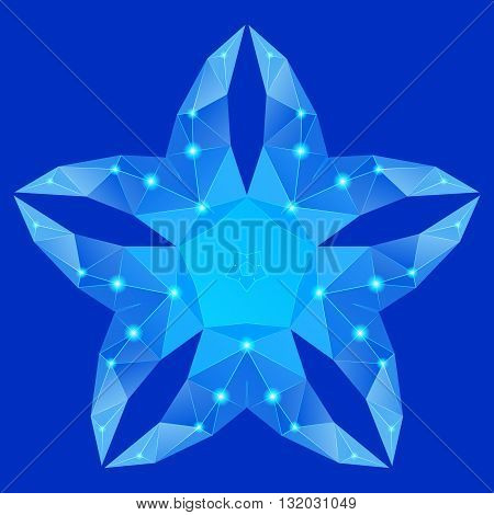 Polygonal geometric constellation in form flower with five petals on blue background
