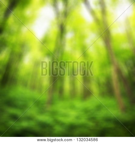 Green spring background with bokeh