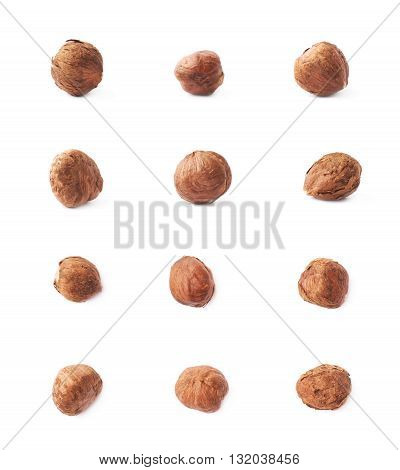 Mulitple single hazelnut nuts isolated over the white background, set of six images, each in two foreshortenings