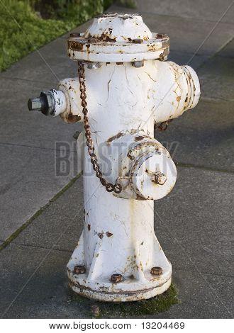 Rusty White Fire Hydrant