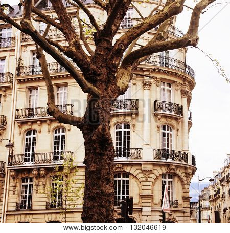 houses on french streets of Paris. citylife concept noone real