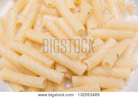 fresh italian pasta with cheese sauce close up