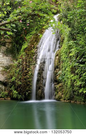Nice small waterfall in green forest