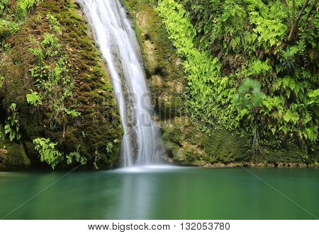 nice landscape with waterfall in mountain forest