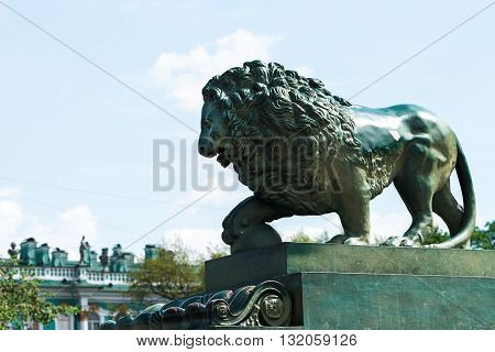 Bronze Lion In Peterburg
