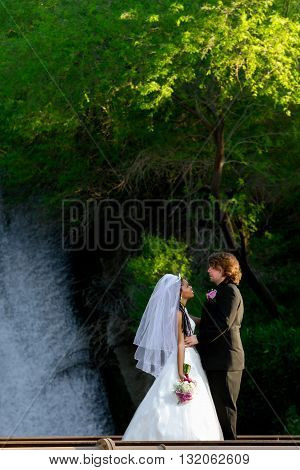 A bride and groom stand gazing at each other while standing in front of a waterfall.