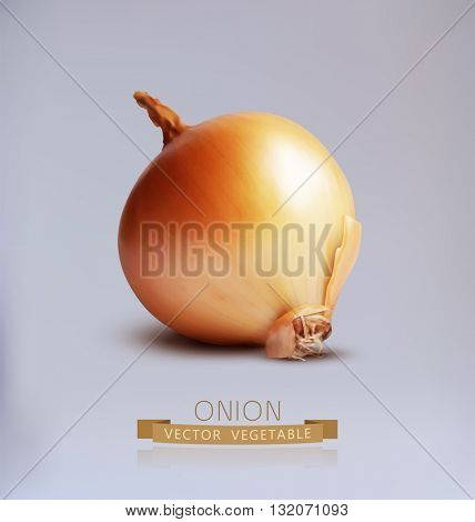 vector bulb isolated on gray background