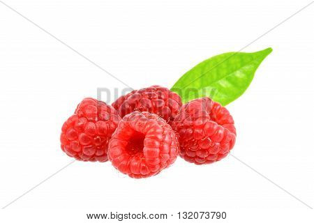 Red berry on white background with clipping path