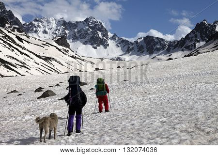 Two hikers with dog in spring snowy mountains. Turkey Kachkar Mountains (highest part of Pontic Mountains).