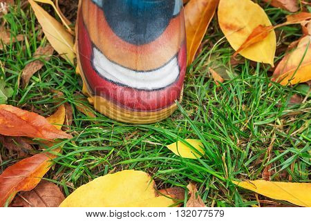 Close up image of a child's foot in rubber boots in fall season.