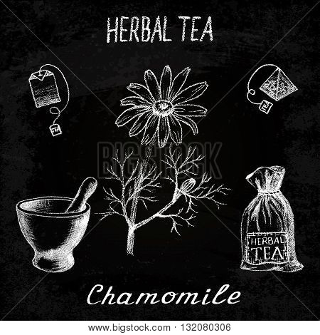 Chamomile herbal tea. Chalk board set of vector elements on the basis hand pencil drawings. Herb chamomile tea bag mortar and pestle textile bag. For labeling packaging printed products