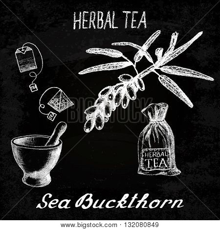 Sea buckthorn herbal tea. Chalk board set of vector elements on the basis hand pencil drawings. Sea buckthorn tea bag mortar and pestle textile bag. For labeling packaging printed products