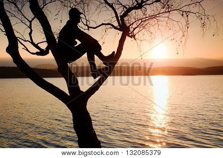 Man Sit On Tree. Silhouette Of  Lone Boy With Baseball Cap  On Branch Of Birch Tree On Beach