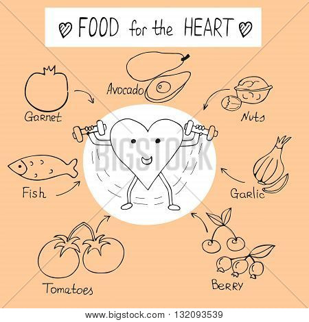 info graphics on the topic of Nutrition for a healthy heart handdrawing