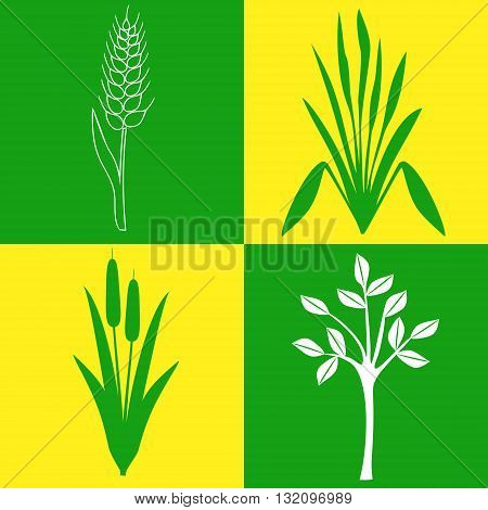 four different icons on the topic of plants, botany, gardening